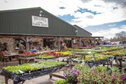 Millers Farm Shop