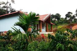 Forest Homestay
