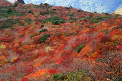 Mt. Nasu