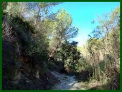 Ruta Senderista Rio Seco