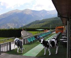 Restaurant Camp Base Naturlandia