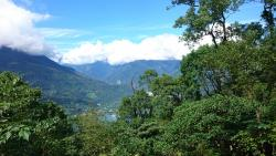 Carp Mountain Trail