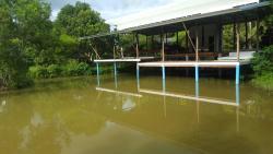 Fishing at palida resort