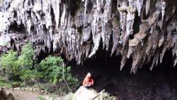 Rawhiti Cave Track