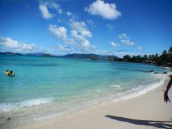 Best Beach Day
