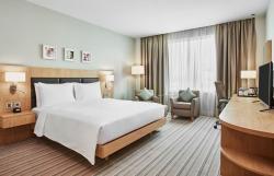 Guest Room Kingn BEd