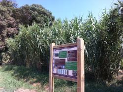 Parcours Découverte : Les Activités Traditionnelles de la Vallée de la Mole