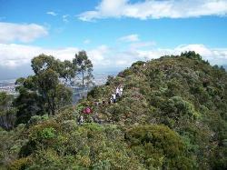 Alameda de Quebrada Vieja