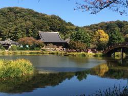 Shomyoji Temple Shimin no Mori