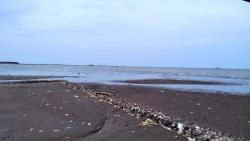 Ade Irma Suryani Waterland