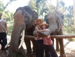 Elephant Dream Valley - Day Tours