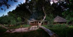 Kwara Camp - Kwando Safaris