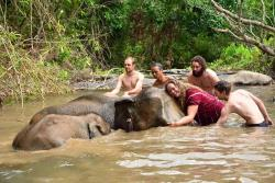 Karen Elephant Family - Day Tours