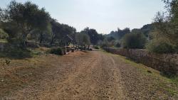 Parque Periurbano Los Cabezos