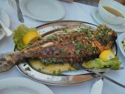 Taverna Ouzeri Kapetanios