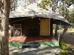 Jungle Tents