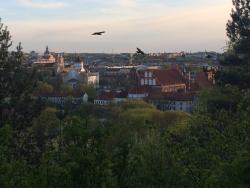 Vilnius Running Tours
