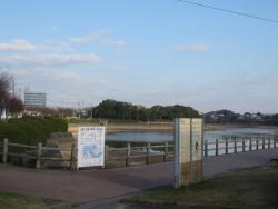Kayoicho Park