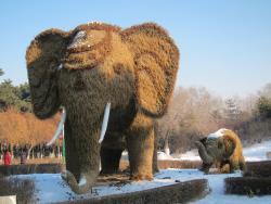 Zoological and Botanical Garden of Changchun