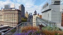 Roof Terrace North across the Manhattan Bridge