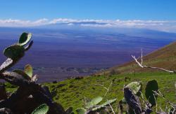 Mauna Kea, Big Island (165836929)