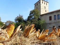 Borgo Medievale di Portobuffole