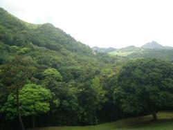 La Vallée de Ferney
