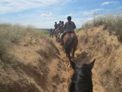 Rundell's Mahogany Trail Rides