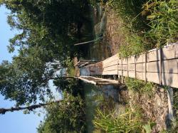 Bridge to private rooms