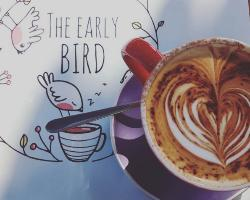 The Early Bird
