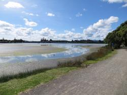 Waikareao Estuary