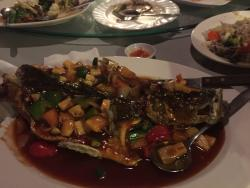 Bayridge Seafood & Chinese cuisines