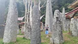 Tana Toraja Tours