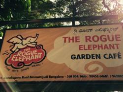The Rogue Elephant