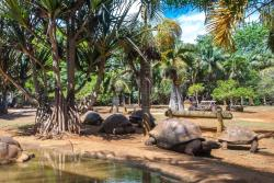 La Vanille Nature Park
