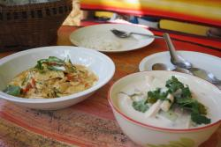 Organic Thai Cooking school