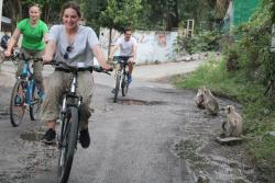 Lets Trip Cycle Tours