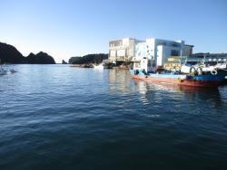 勝浦漁港にぎわい市場