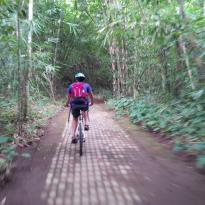 Ubud Bike Adventure