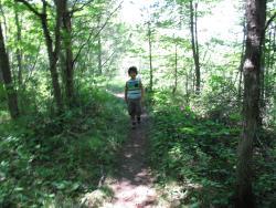 Macaulay Mountain Conservation Area