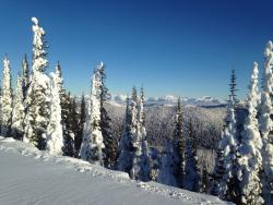 Swan Mountain Snowmobiling