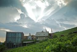 Weingut am Stein, Ludwig Knoll