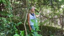Vieques Hidden Trails
