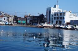 Misaki Port
