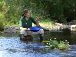 Goldpanning in Adelfors