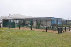 Sanccob Eastern Cape - Penguin Rehabilitation Center