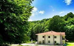 Elatias Forest