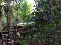 Khaosok Tree House Resort