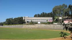 Montfort School
