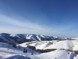 Altaiskiye Alpy